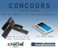 concours omf crucial bx100 bx elite 2666