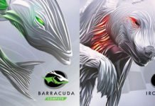 Seagate Barracuda - Ironwolf