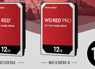 Western Digital Red 12 To