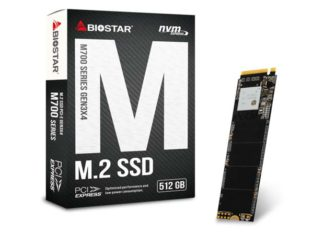 Biostar M700